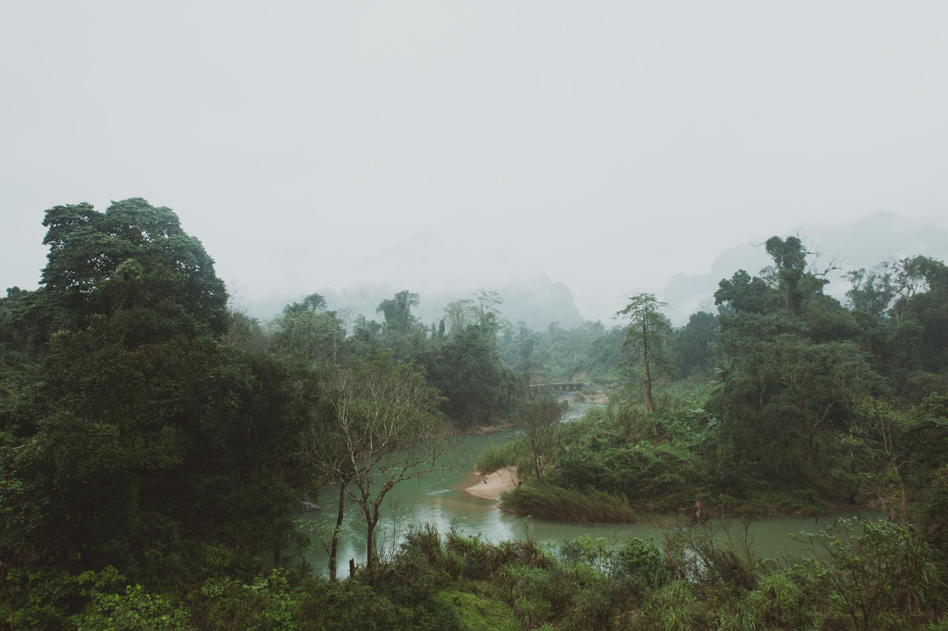 Vietnam jungle - Sasha Weddings - informal wedding photographer