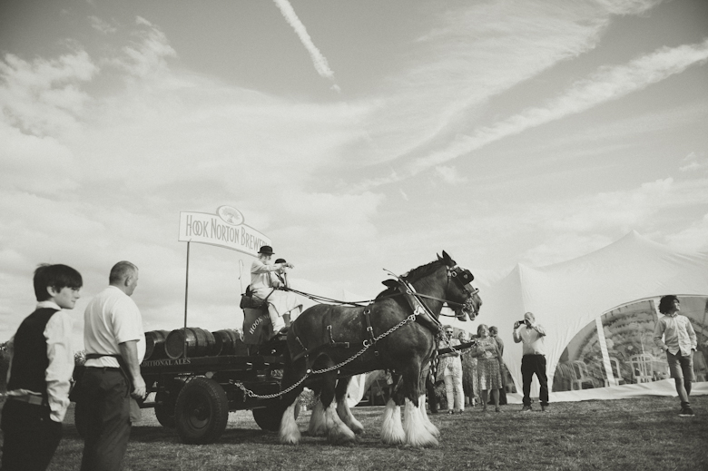 Horses at a wedding